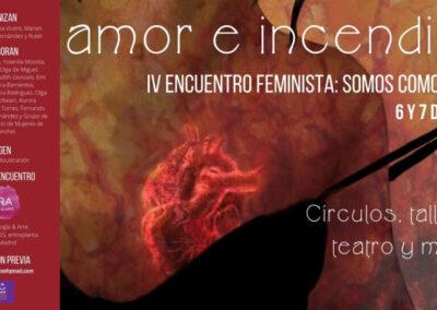 IV Encuentro feminista 2020